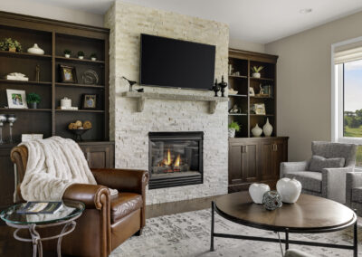 Defining Details Fireplace